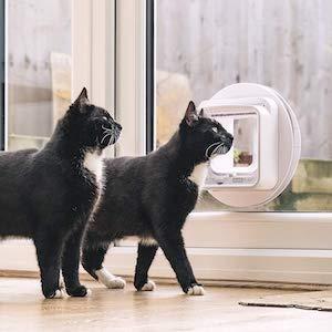 Contrôle complet de la chatière SureFlap Connect