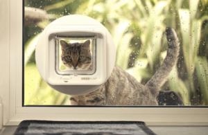 Grande efficacité pour la chatière DualScan SureFlap