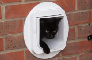 La chatière électronique SureFlap s'utilise simplement