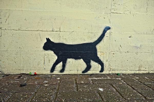 Comment installer une chatière dans un mur épais